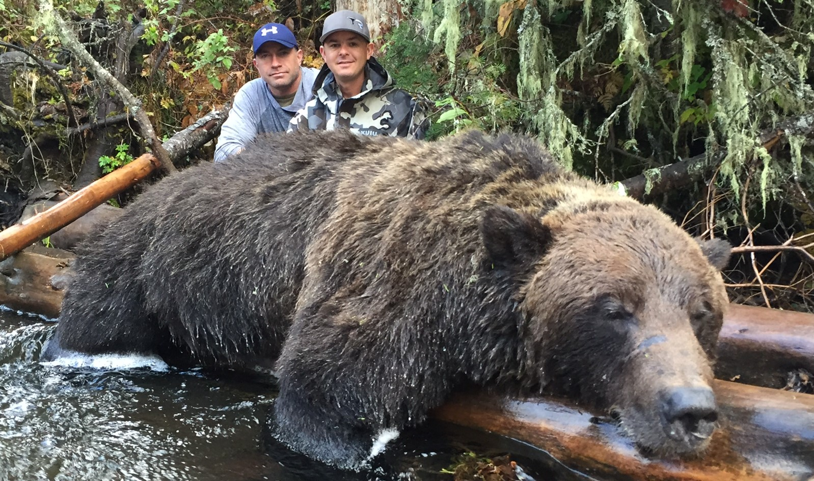 What Is A Class Action Lawsuit >> Grizzly Bear Hunting, British Columbia | Covert Outfitting